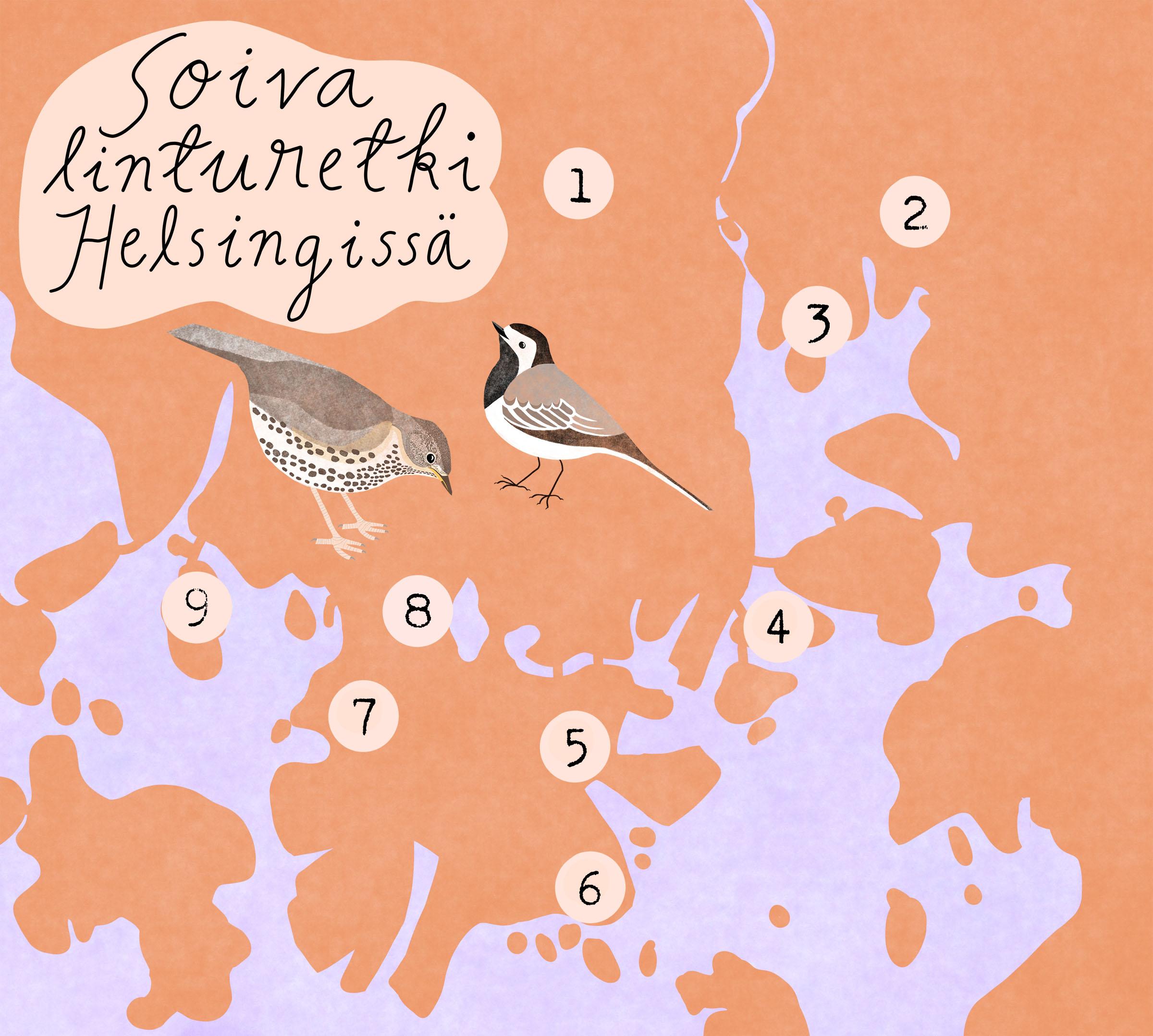 Karttakuva Soivan linturetken havaintopaikoista